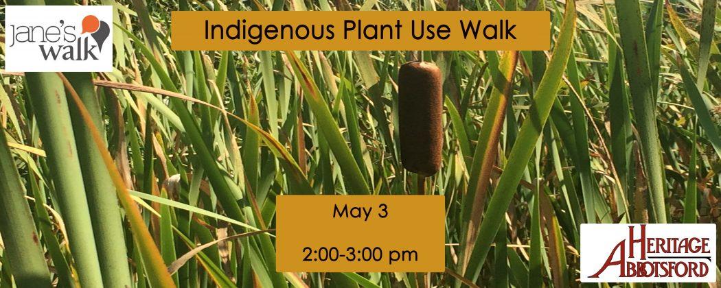 Indigenous Plant Use Tour